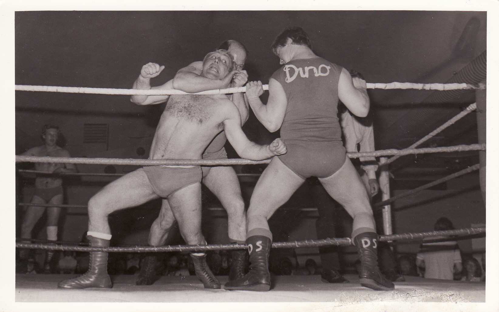 Tony and Dino Scarlo